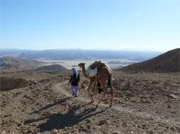 Активный отдых в пустыне Синай (Египет)